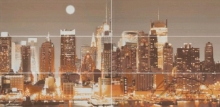 панно APE Brasil The City 60x120